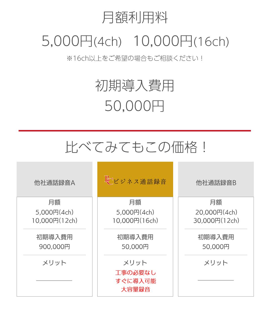 月額料金5000円から